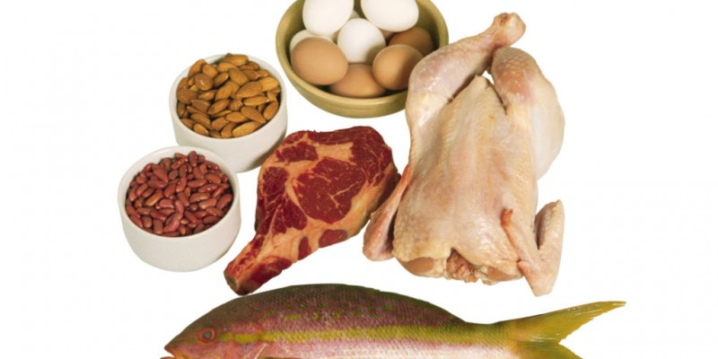 High Protein Diets – The Truth