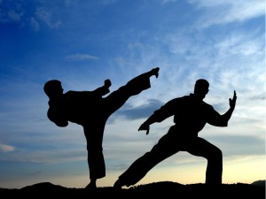 Martial arts retrain the brain to no longer fear for survival.